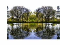 A photo of Riverside Park Reflections